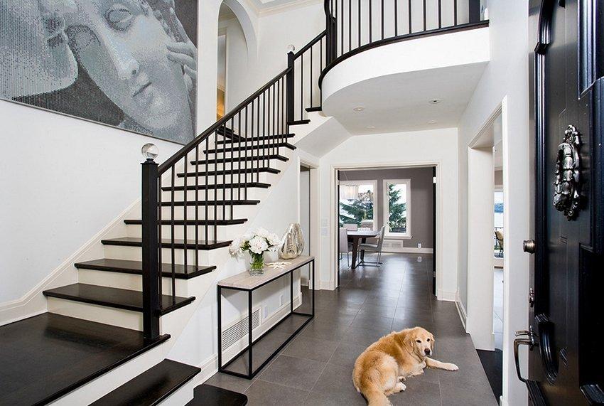 Gros chien sur le sol du couloir avec escalier