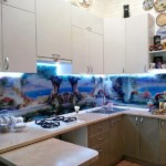 Șorț din sticlă cu imprimare foto în bucătăria din colț