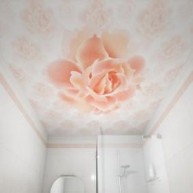 Bông hồng xinh đẹp trên trần nhà trong phòng tắm