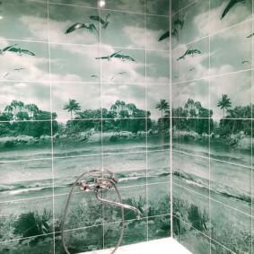 Bờ biển trên tấm trong phòng tắm