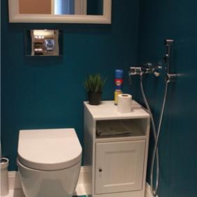 Conception de toilettes avec des murs bleus