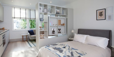 salon et chambre à coucher dans des options d'idées d'une seule pièce