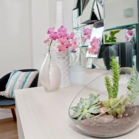 Plantes vivantes à l'intérieur de la pièce