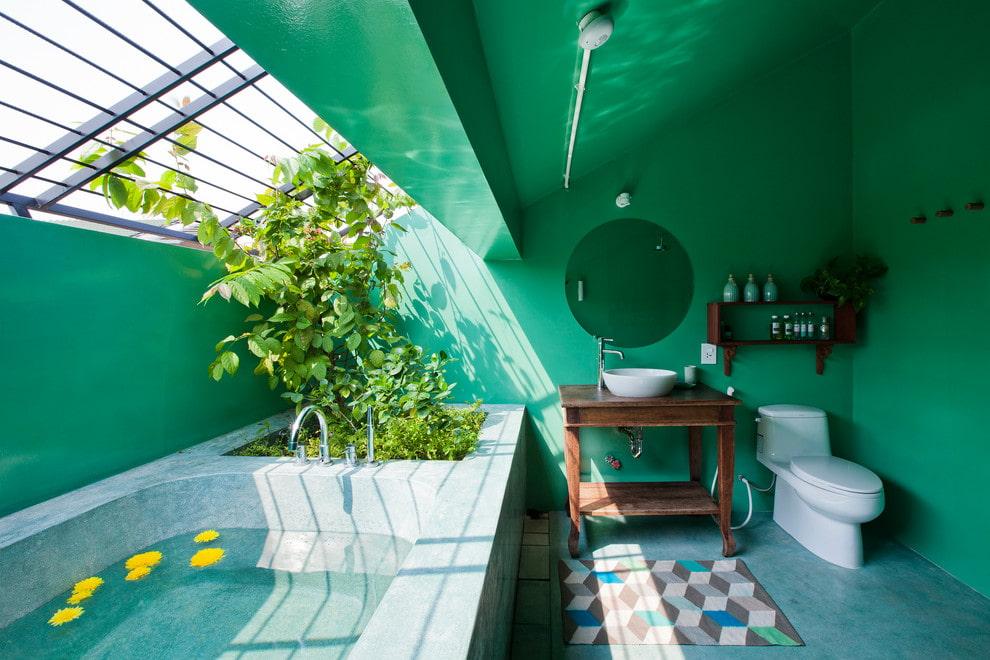 Murs verts dans la salle de bain d'une maison privée