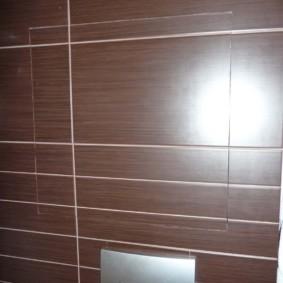 Trappe dans le mur des toilettes avec des toilettes