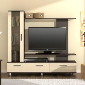 Mur TV dans les idées de décoration du salon