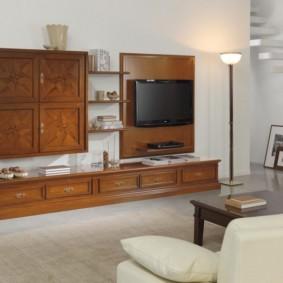 Mur TV dans les options photo du salon