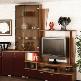 mur pour la télévision dans le salon photo design