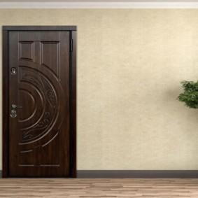 porte d'entrée de l'appartement photo intérieur