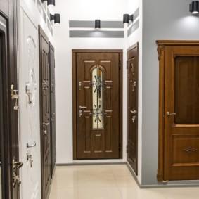 portes d'entrée à la vue des idées de l'appartement