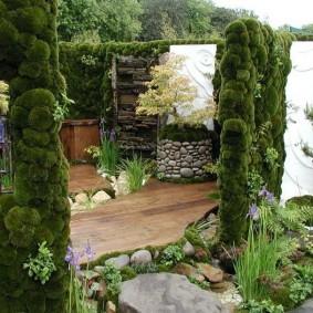 Petit jardin de style oriental
