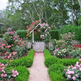Beau jardin avant avec des roses en fleurs