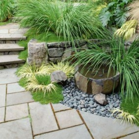 Fontaine compacte dans un coin isolé du jardin