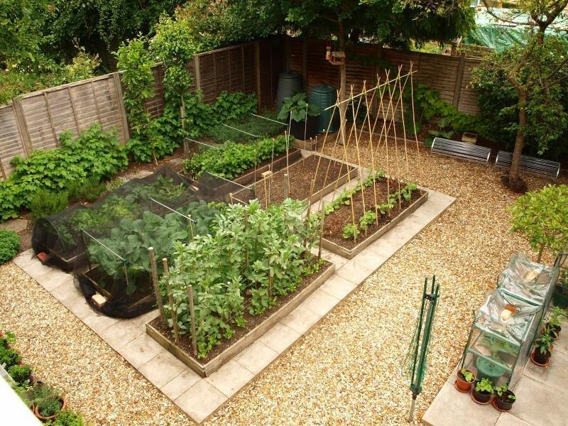 Jardin compact avec de beaux lits