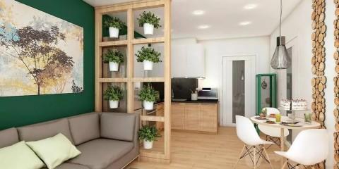 appartement d'une chambre style éco
