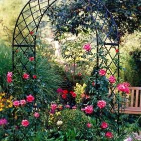 Arche de jardin avec des roses en fleurs
