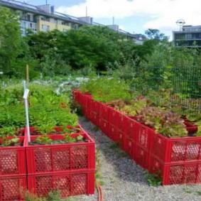 Lits de jardin à partir de boîtes en plastique