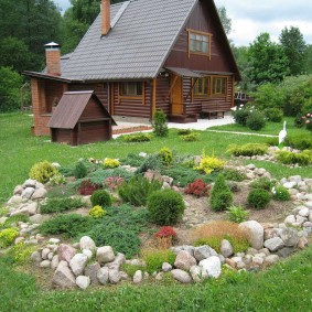 Petit jardin de rocaille sur un terrain avec une maison en bois