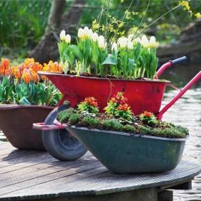 Lits de jardin de vieilles brouettes