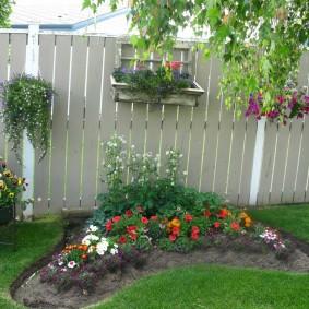 Parterre de fleurs soigné avec des fleurs annuelles