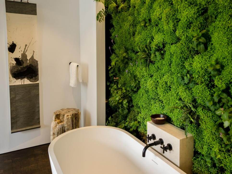 Mur vivant à l'intérieur de la salle de bain combinée