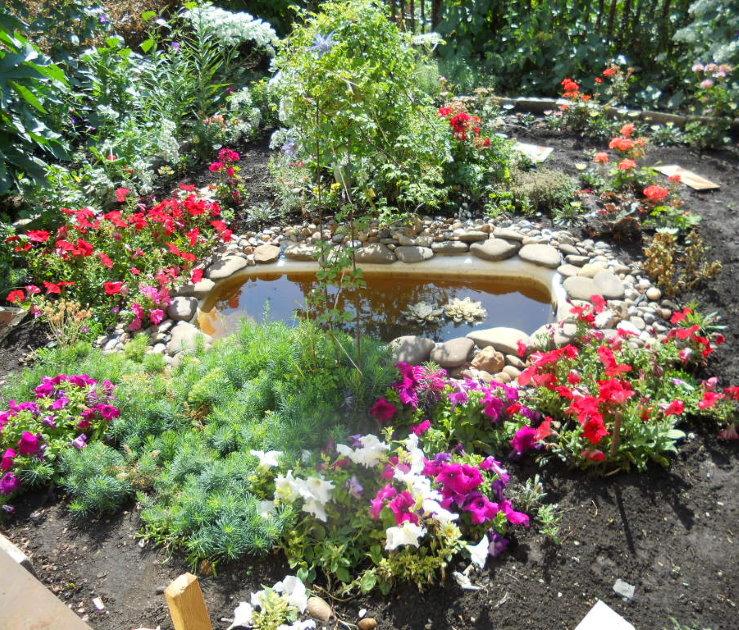 Étang fait maison d'un ancien bain dans le jardin d'une maison privée