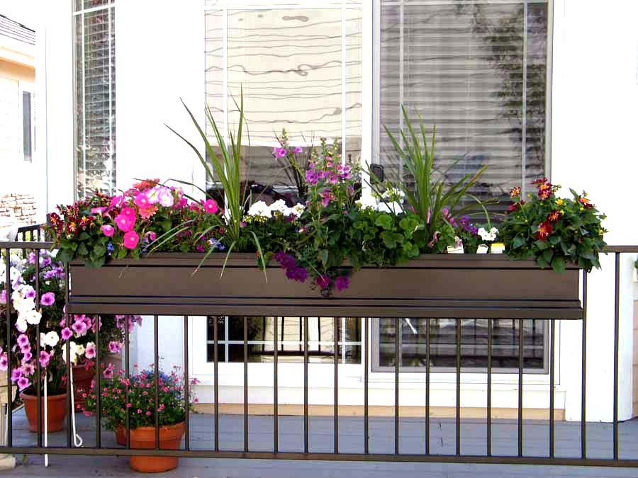 Plantes vivantes dans un panier de fleurs sur la balustrade du balcon