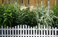 jardin décoration clôture idées de décoration