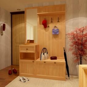 Conception d'un hall d'entrée avec mobilier d'armoire