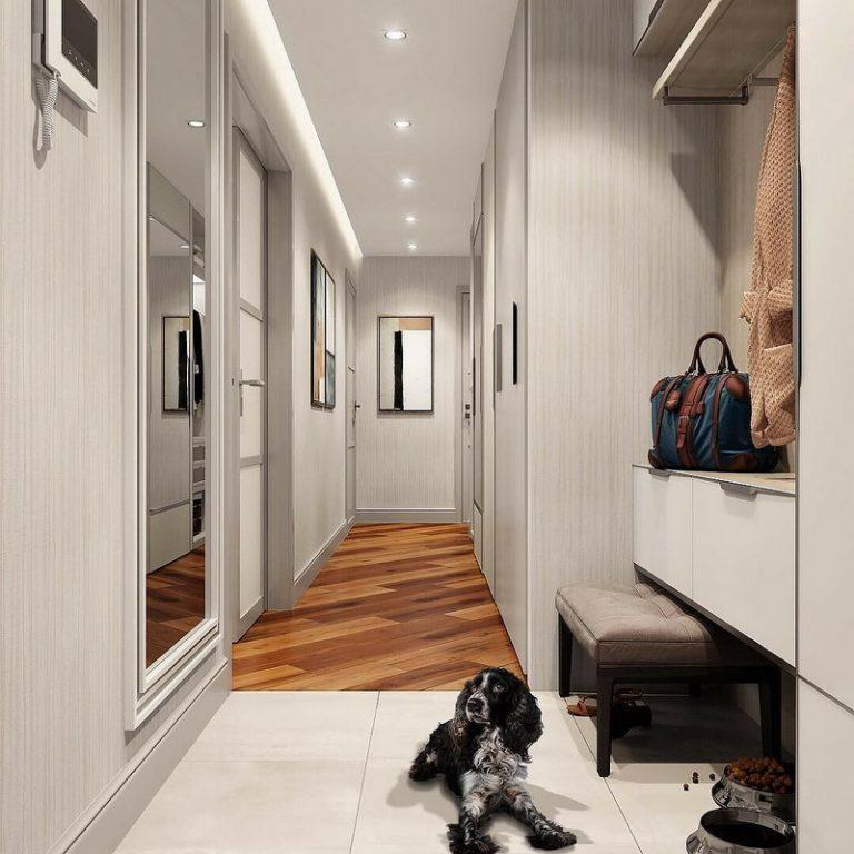 Chien pas de sol en céramique dans le hall d'entrée de l'appartement