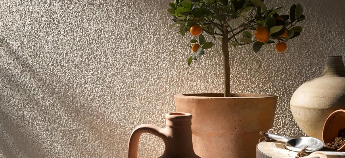 calcin pour cuisine provence