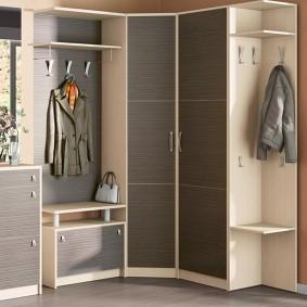 garde-robe avec portes battantes pour les types de photos de salle